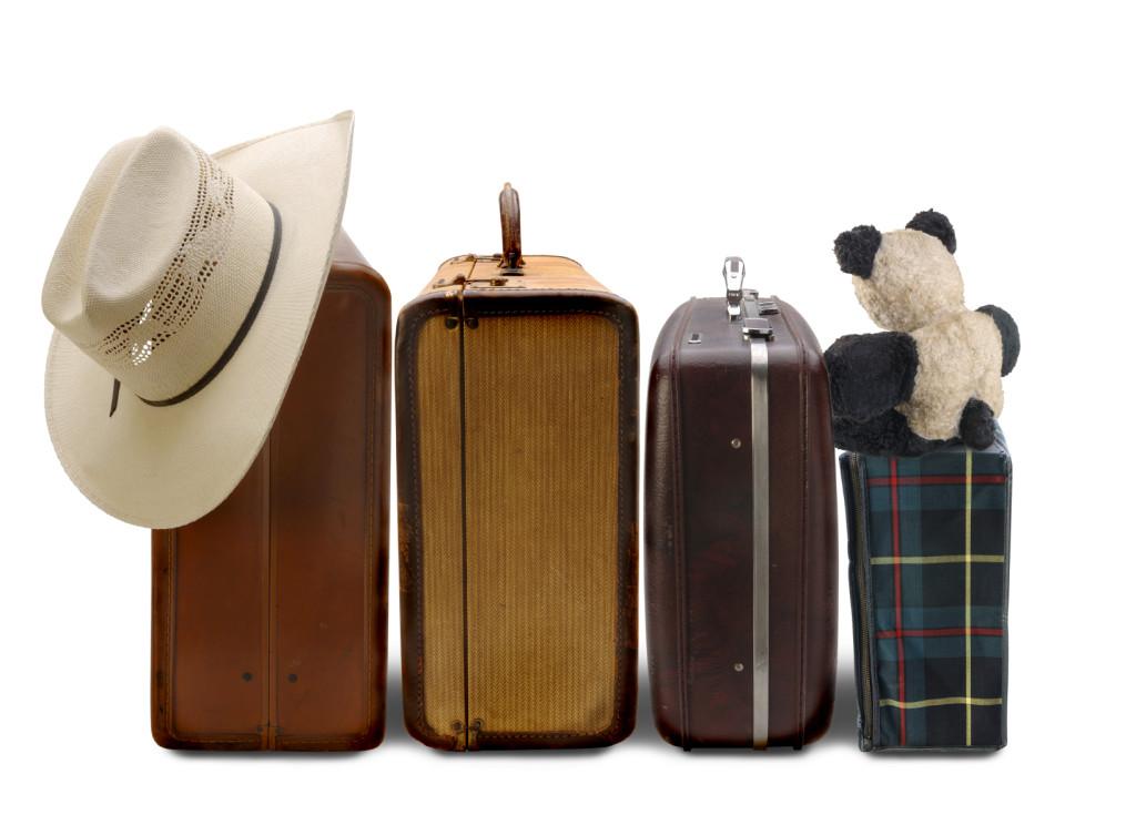 family-luggage-2