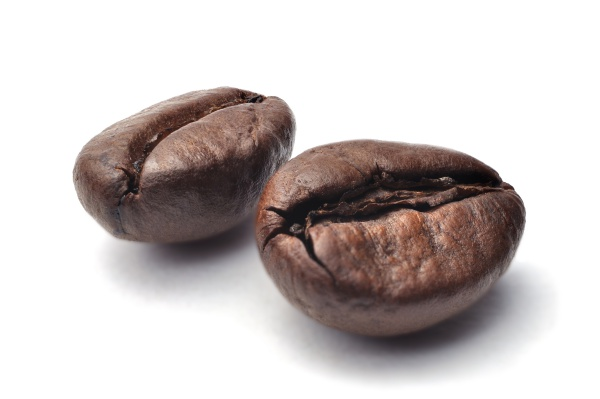 close up of two dark roasted fair trade coffee beans on a white