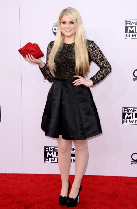 42nd Annual American Music Awards - Arrivals - By Lionel Hahn