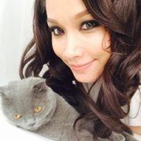Gambar Kucing Comel Milik Selebriti Popular Tempatan