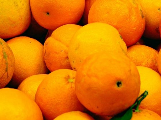 Vitamin C Kolagen Terbaik Kulit Wajah