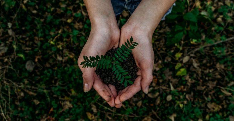 5 Sumbangan Anda Boleh Lakukan Untuk Bumi Yang Lebih Lestari Tahun Ini